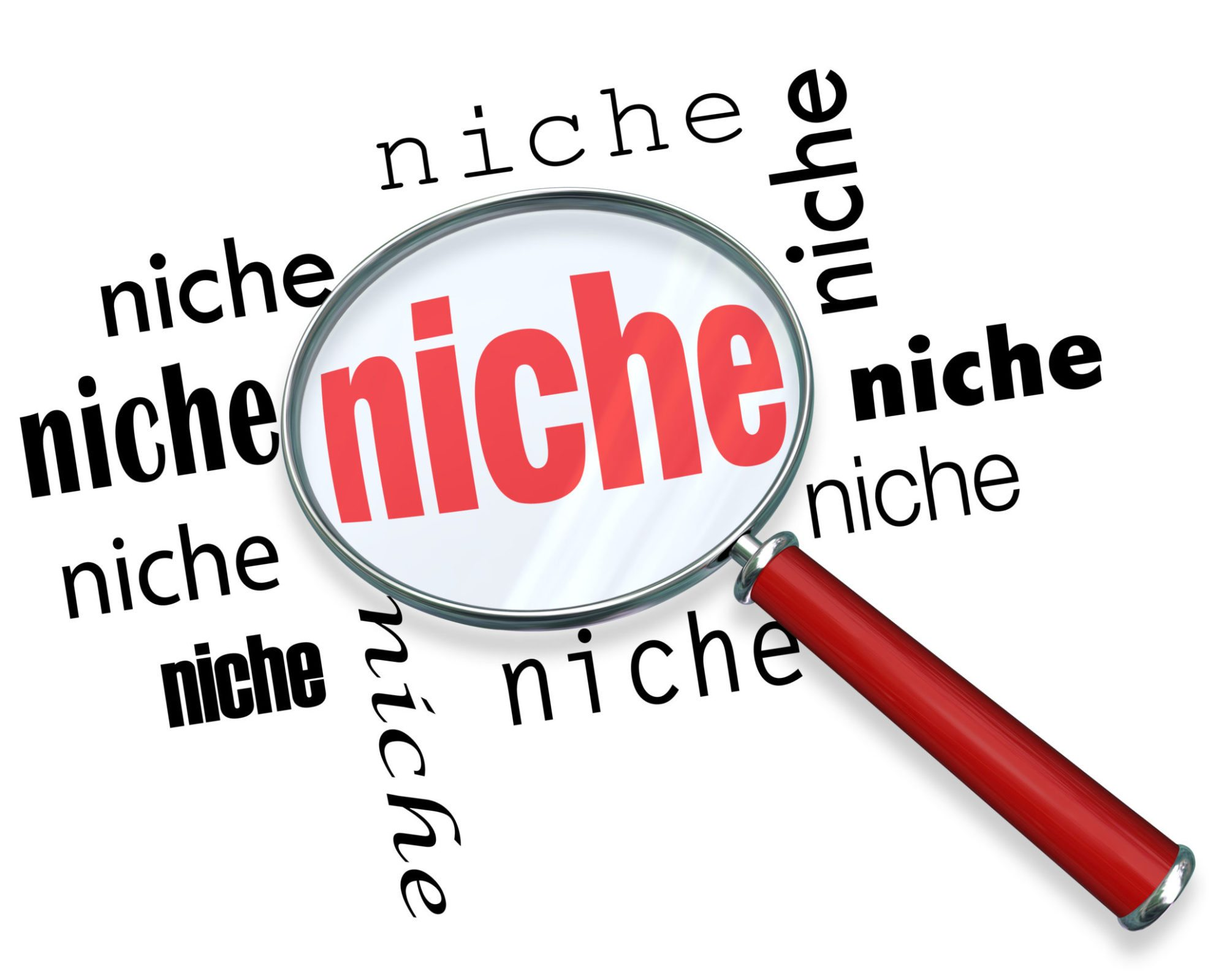 Finding the Perfect Niche – Turning an Idea into a Viable Business