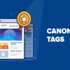 The Ultimate Guide to Common Mistakes You Should Avoid Making with Canonical Links