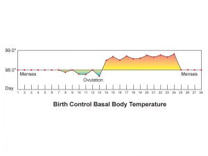 Birth control bassal body temperature
