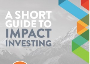 investing Short Guide