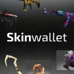 Skinwallet if You are a Gamer